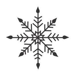 Schneeflocken-Stern 2 maxi