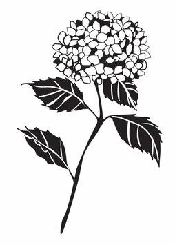 Hortensienzweig schwarz maxi