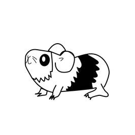 Meerschweinchen schwarz maxi
