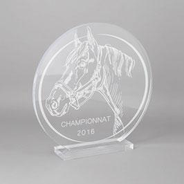 Trophée sportif équitation