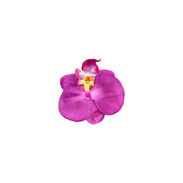 Single Orchid Clip