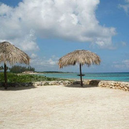Program Discover Coral Beach