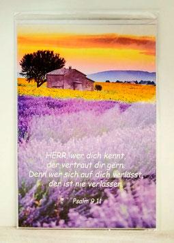 Geburtstagskarte Lavendel