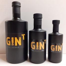 GIN - T