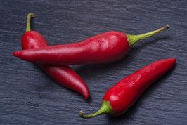 Chili-Schwarzbrot