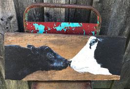 Kühe - Mutter und Kind