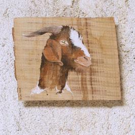 Ziege 'Wolfgang' aus Drackenstein
