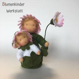 Jubiläumsausgabe Gänseblümchen mit Baby und Blüte
