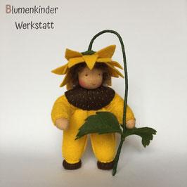Sonnenblume Junge