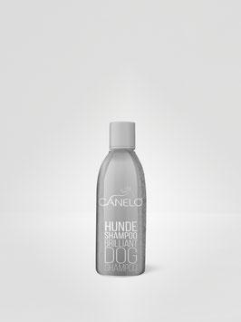 Hundeshampoo - Brilliant 200ml