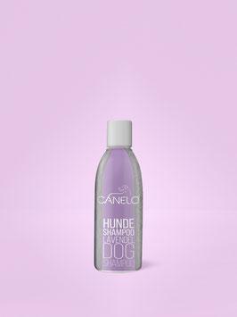 Hundeshampoo - Lavendel 200ml