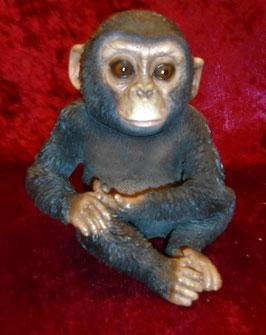 (1) Schimpansen Baby