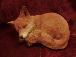 (1) Fuchs schlafend