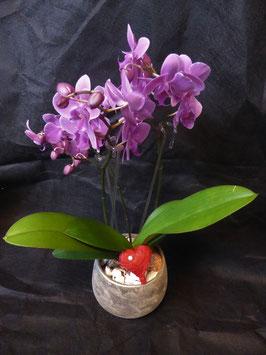 (VA1) Orchidee mit Herz