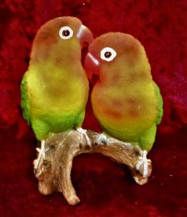 (5) Love Bird