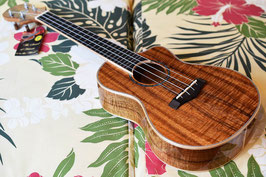 NEW/Big Island K5A-CTU Artist Series CONCERT