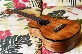 NEW/Uma Ukulele UK-35ST Tenor