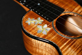 NEW/honua ukulele HC-08C Concert Plumeria Custom