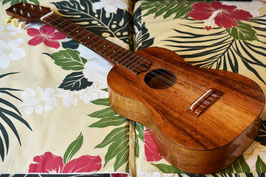 ★SOLD★USED/VALLEY MADE TEN 6Strings HawaiianKoaModel