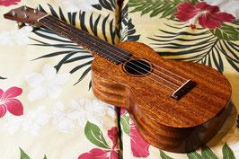 NEW/tkitki ukulele AMC-ABALONE Concert【S/N0347】