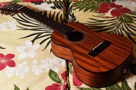 USED/Pono MT6 Tenor6弦