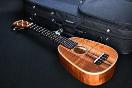 ★SOLD★NEW/honua ukulele HPL-05C ShopCustom Pineapple soprano LongNeck