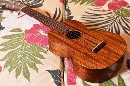 NEW/tkitki ukulele AMC-ABALONE Concert【S/N0343】