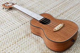 NEW/Bearlele BL-C30E CONCERT【OUTLET】管理番号①