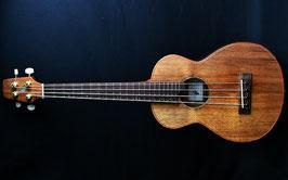 ★SOLD★New/Seilen AMB2-282x4 Mobile Mini Bass