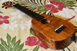 ★SOLD★NEW/HONUA UKULELE HP-01 Soprano Pineapple
