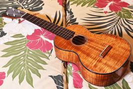 NEW/tkitki ukulele HK-C5A EH Concert TR10th AnniversaryModel