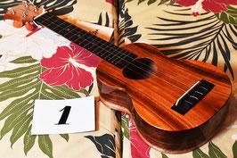 NEW/KoAloha KSM-02 Soprano LongNeck #01
