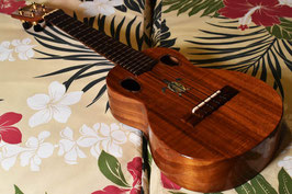 ★HOLD★USED/G String Concert DoubleHole Honu