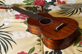 ★SOLD★NEW/tkitki ukulele AM-T・KIYOSAKU