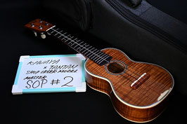 NEW/KIWAYA TANTAN SHOPORDER MASTER MODEL Soprano #02
