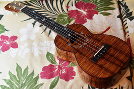 ★SOLD★NEW/Oihata ukulele&guitars The Dog's Concert No.225