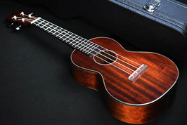 NEW/EASTMAN EU3C Concert