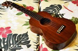 VINTAGE/Gibson TU-1 Tenor【1963年製】