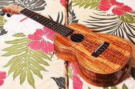 USED/Antar HawaiianKoa Concert