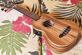 USED/Luna Guitars UKE HTS ZBR Zebrawood Soprano
