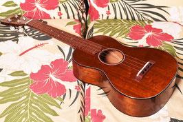 NEW/tkitki ukulele HM-T CUSTOM Tenor 【ホンジュラスマホガニー】