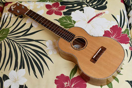 ★SOLD★USED/COTONE CCC/SP/KOA CONCERT