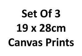 Set Of 3 19x28cm Canvas