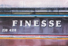Finesse Canvas Print