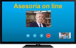 Consulta por teléfono o Skype de una hora