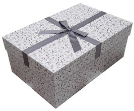 Brautkleidbox - Silberglanz