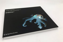 Manfred Wakolbinger - Unter der Oberfläche / under the surface (Kunst buch / art book