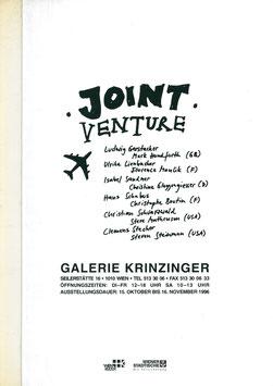 Joint Venture (Ausstellungs-Katalog - Krinzinger Projekte) 1996