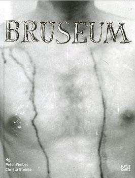 Brus (Bruseum - Ein Museum für Günter Brus) 2011.