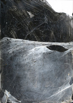 Christian Eisenberger - o.T. / cobwebs _ Spinnenwebenbild)  (Kunst / artwork) 2014